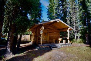 Log Cabin #D